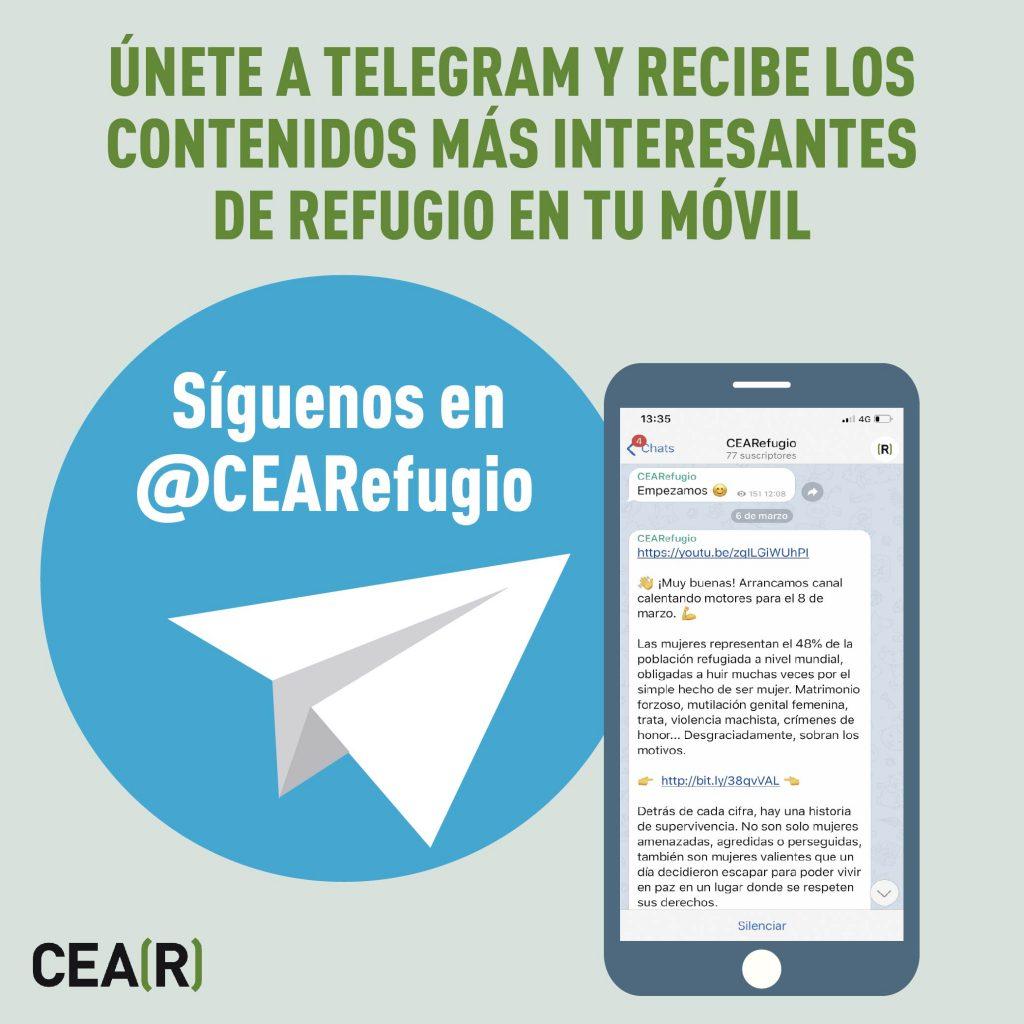 canal telegram CEAR
